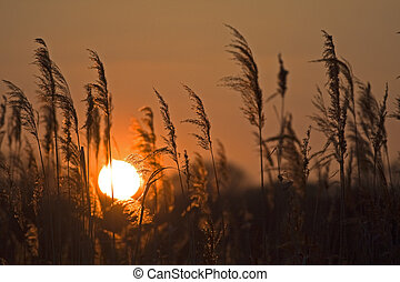 Poland Nysa sunrise - Poland Nysa 16-09-2012 sunrise on Nysa...