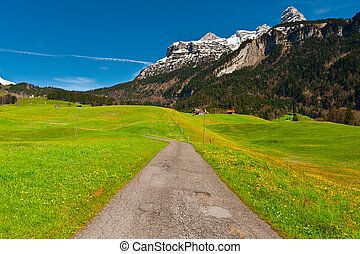 Swiss Road
