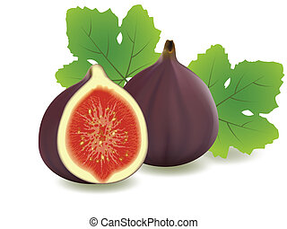 Figs - vector illustration . Figs on white background