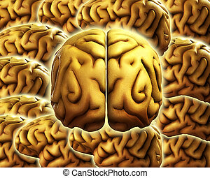 Brain Background 8 - A background made out of human brains...