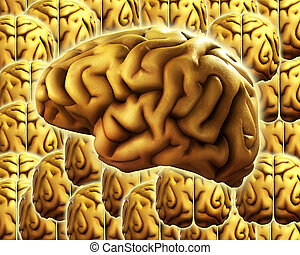 Brain Background 9 - A background made out of human brains....