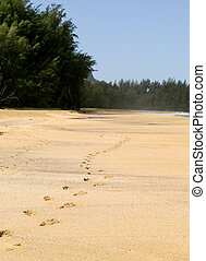 Footsteps receding into the distance - Footsteps on the...