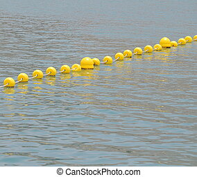 Yellow Floaters - Some Yellow Floaters over the Blue of the...