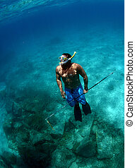 man spearfishing underwater - a man with spear gun...