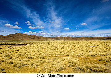 Desert and mountain over blue sky and white clouds on...