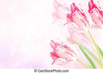 Beautiful floral border of pink violet tulips with blurred...