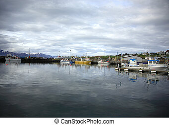 Husavik harbour - The whale watching port of Husavik harbour...