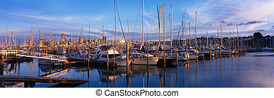 Yachts and Pleasure Boats in Auckland Harbour