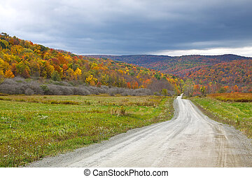 Autumn Landscape - A dirt road winds through the colorful...