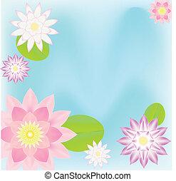 pink lotus  card background
