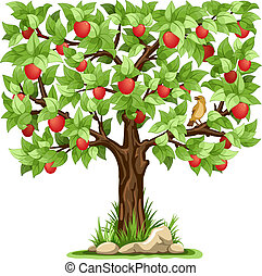 Apple tree - Cartoon apple tree isolated on white background