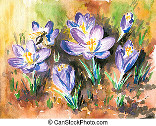 Crocus - Springs flowers watercolor paintedPicture I have...