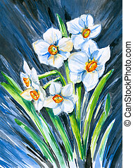 Narcissus - White narcissus watercolor painted.Picture I...