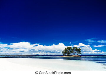 White coral beach sand and azure indian ocean - La Digue...