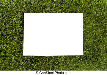 Grass Frame - A sheet of white paper for text sits ontop of...