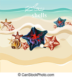 Beach background with  starfishes and shells