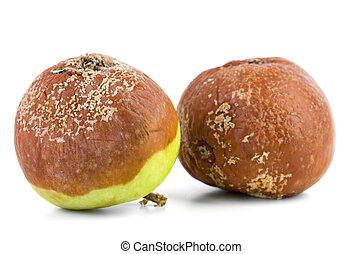 Two rotten apples isolated on the white background