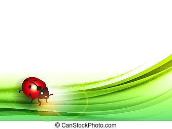 ladybug on the green abstract leaf