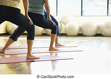 Women in yoga class. - Caucasian prime adult females in yoga...