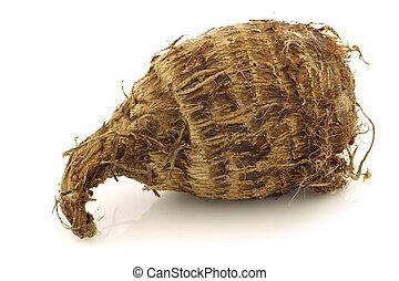 一, 新鮮, 芋頭, 根, (colocasia)