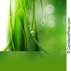 nature background - abstract nature background with drops of...