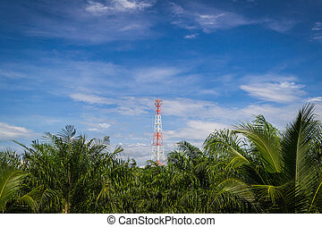 Mobile phone communication repeater antenna tower among oil...