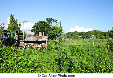 Wooden house in countryside