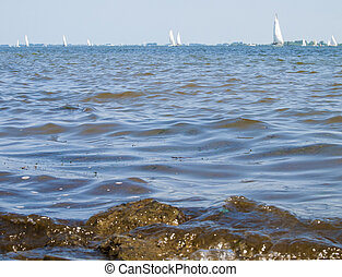 sail boats sailing on the sea