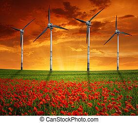 red poppy field with wind turbine