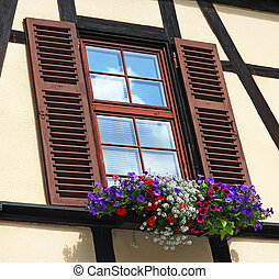 Window with shutters and box of different colorful flowers -...