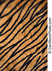 Tiger print carpet - Close up shot of tiger print carpet