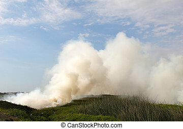 Smokey Fire - A fire is used to clear the land along the...
