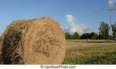 straw bale roll - straw bales rolls move in wind in...