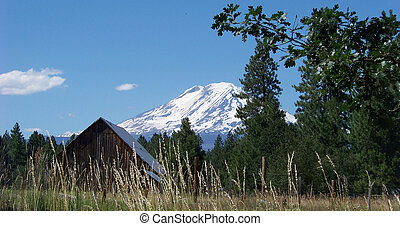 Mt Adams and Barn - Mt Adams rises behind a rustic Barn near...