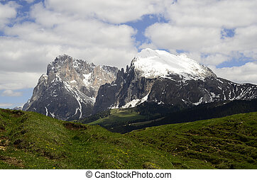 Italy, South Tyrol, Alpe di Suisi, rock formation Sasso...