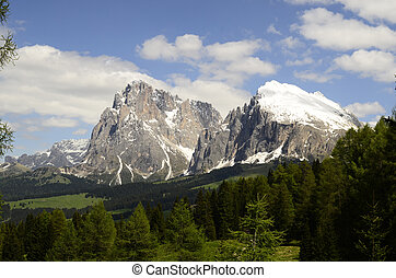 Italy, South Tyrol, Alpe di Suisi, Sasso Longo and Sasso...