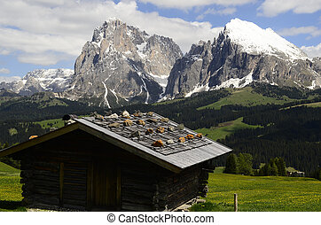 Italy, South Tyrol, Alpe di Suisi, barn and view to Sasso...