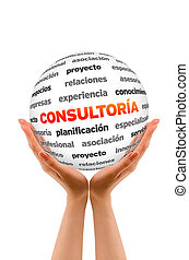 Consulting Word Sphere (In Spanish)