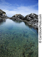 Tidal pool in Maui, Hawaii - Tidal pool with seaweed and...