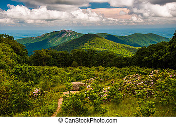 Meadow and view of Old Rag from an overlook on Skyline Drive...