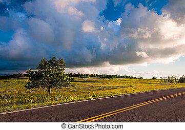 Skyline Drive and tree in Big Meadows, Shenandoah National Park, VA.