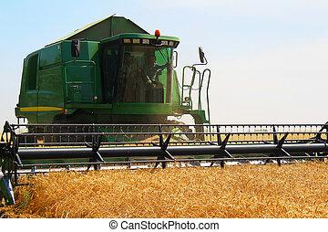 Harvester for harvesting wheat, Ukraine - Harvester for...