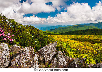 View of the Blue Ridge from cliffs on Stony Man Mountain in...
