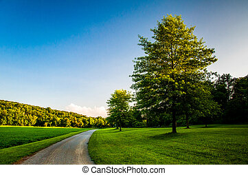 Trees and lawn along dirt path in Southern York County,...
