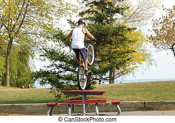 Cyclist doing stunts at a local park