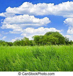 Grass and trees with cloudy blue sky