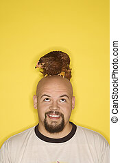 Man with chicken on head. - Bald caucasian mid-adult man...