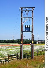 Telegraph poles and wild flowers. - Telegraph poles leading...