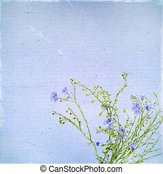Vintage old postcard with blue flowers of flax