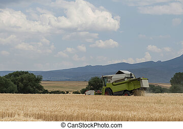 Combine harvester working in a cereal crop. - One modern...